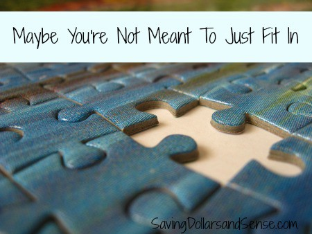 A missing piece to the puzzle. Maybe you're not meant to fit in.