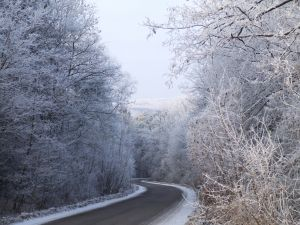 1130317_winter_road