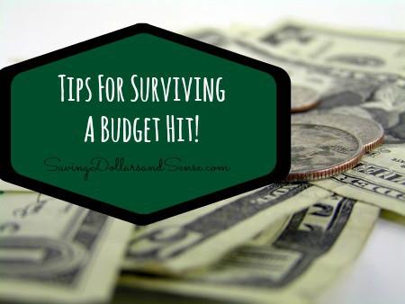 Surviving a Budget Hit