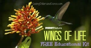 DisneyNature Wings Of Life FREE Educational Kit!