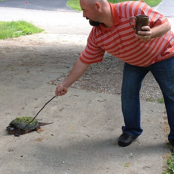 A man is poking the turtle with a stick.