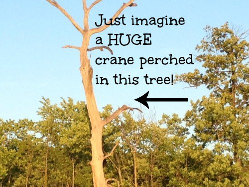A giant crane in a big tree.