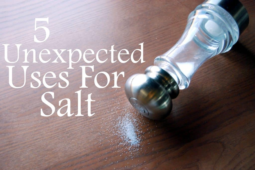 unexpected uses for salt