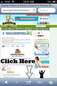 site pic