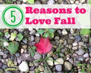 5 Signs of Fall + 5 Reasons to Love it!