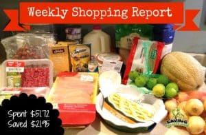 Weekly Shopping Report with Price Breakdowns