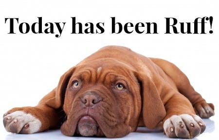 """Puppy dog with caption that reads \""""today has been ruff.\"""""""