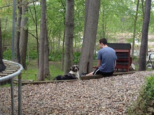 A boy and a dog sitting on a bench next to a forest