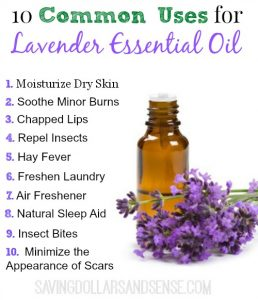 Everyday Essentials: Lavender Oil