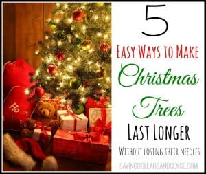 How to Make Christmas Trees Last Longer