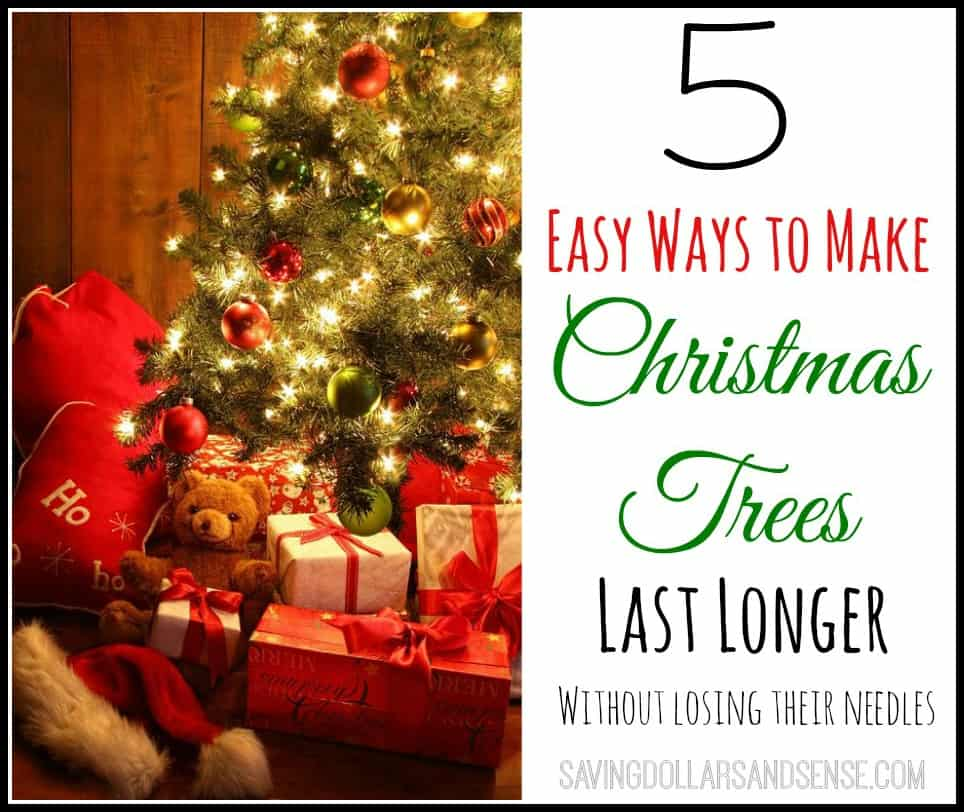 5 Ways to Make Christmas Tree Last Longer
