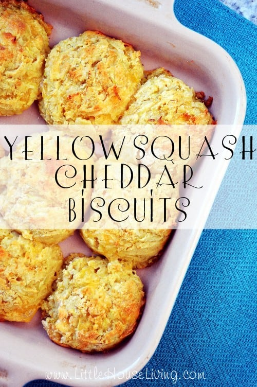 Yellow Squash Cheddar Biscuits