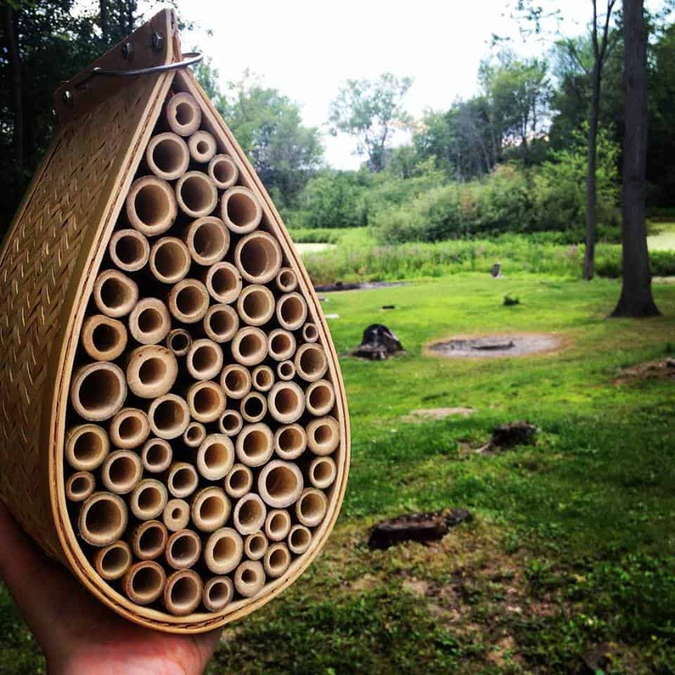 How to Make a Bee House and Habitat
