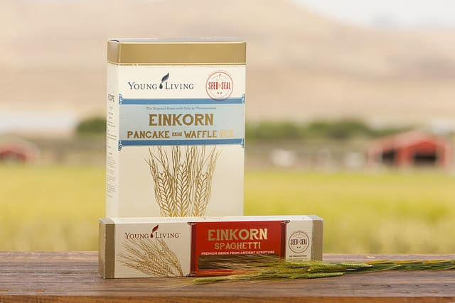 What is Einkorn and Can it Help Gluten Intolerance?