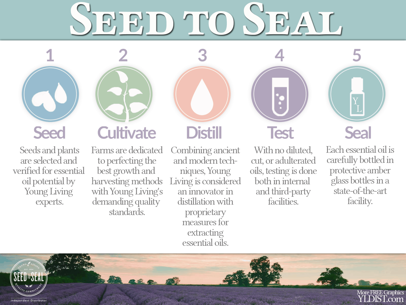 Seed-Seal-public (1)