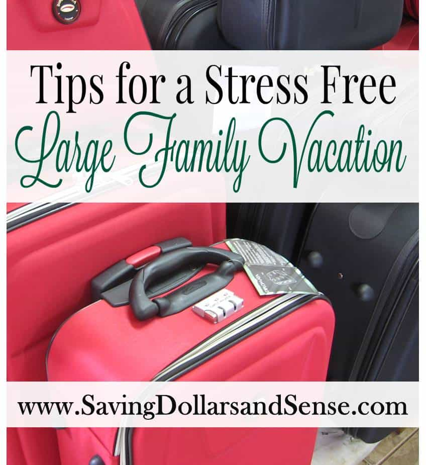 Tips for a Stress Free Large Family Vacation