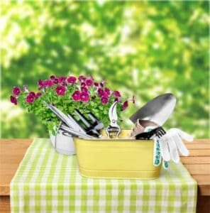 Where to Find Free Gardening Resources