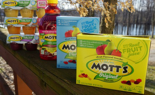 motts products