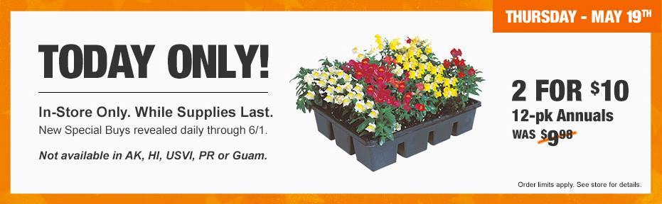 Annual Flower Flats - Garden Inspiration