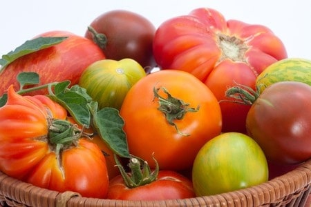 Heirlooms vs. Hybrids: What are the Tomatoes Difference?