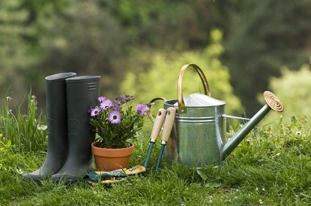 Must-Have Gardening Tools & Accessories