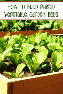 How to Build Raised Vegetable Garden Beds