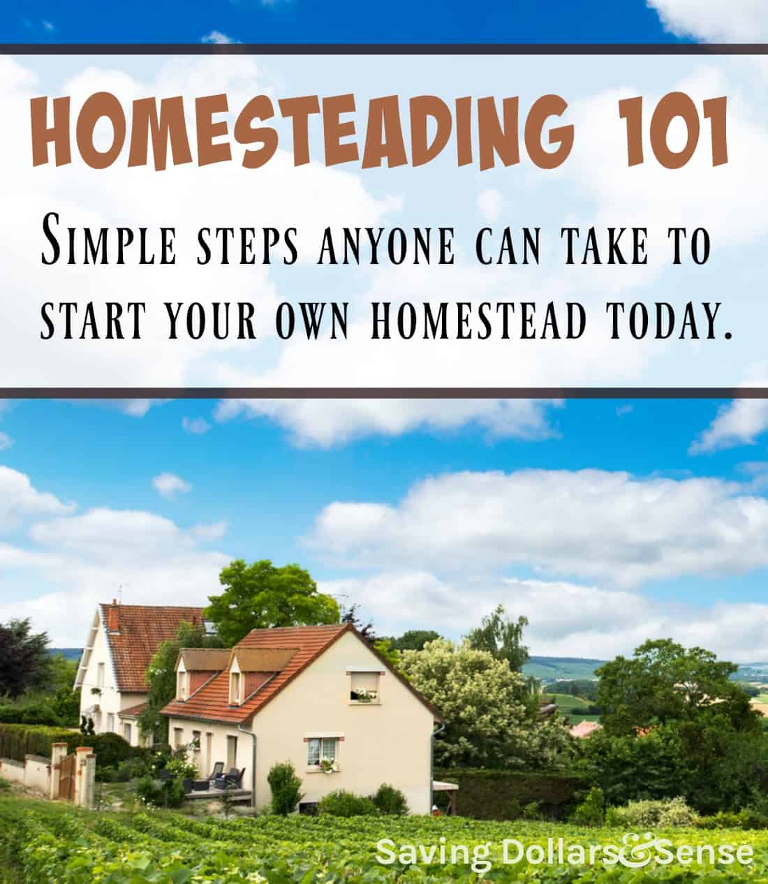 How to Begin Homesteading Without a Farm