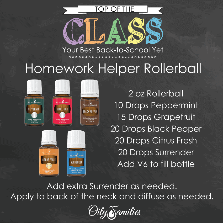 BTS Homework-Helper-Rollerball
