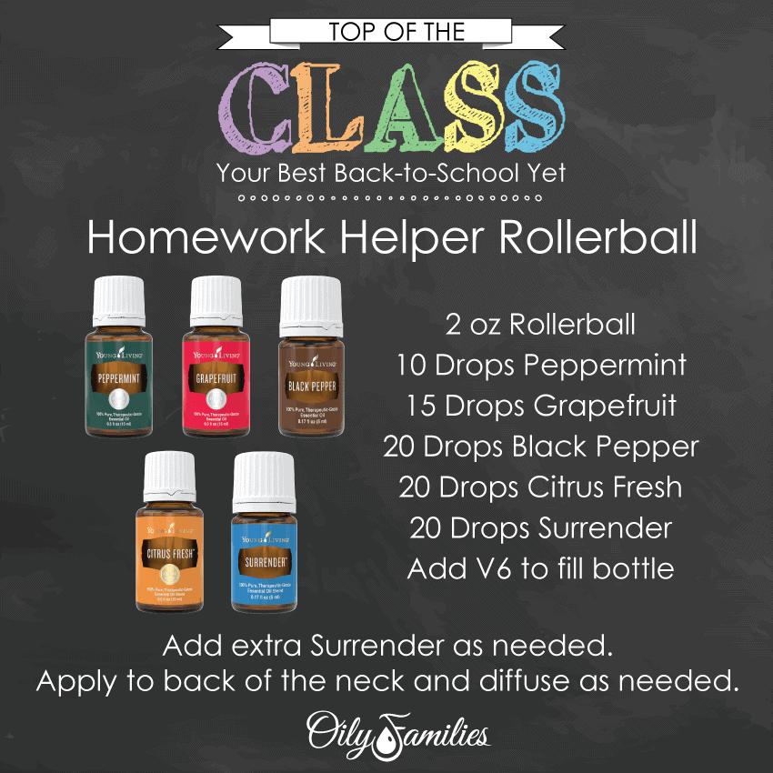 BTS Homework-Helper-Rollerball