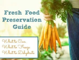 Food Preservation Guide – How To Decide What To Can, What To Freeze And What To Dehydrate
