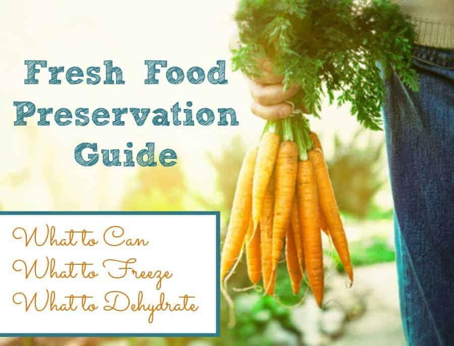 fresh-food-preservation-guide