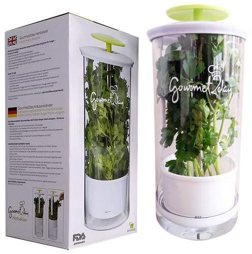 Glass herb keeper.