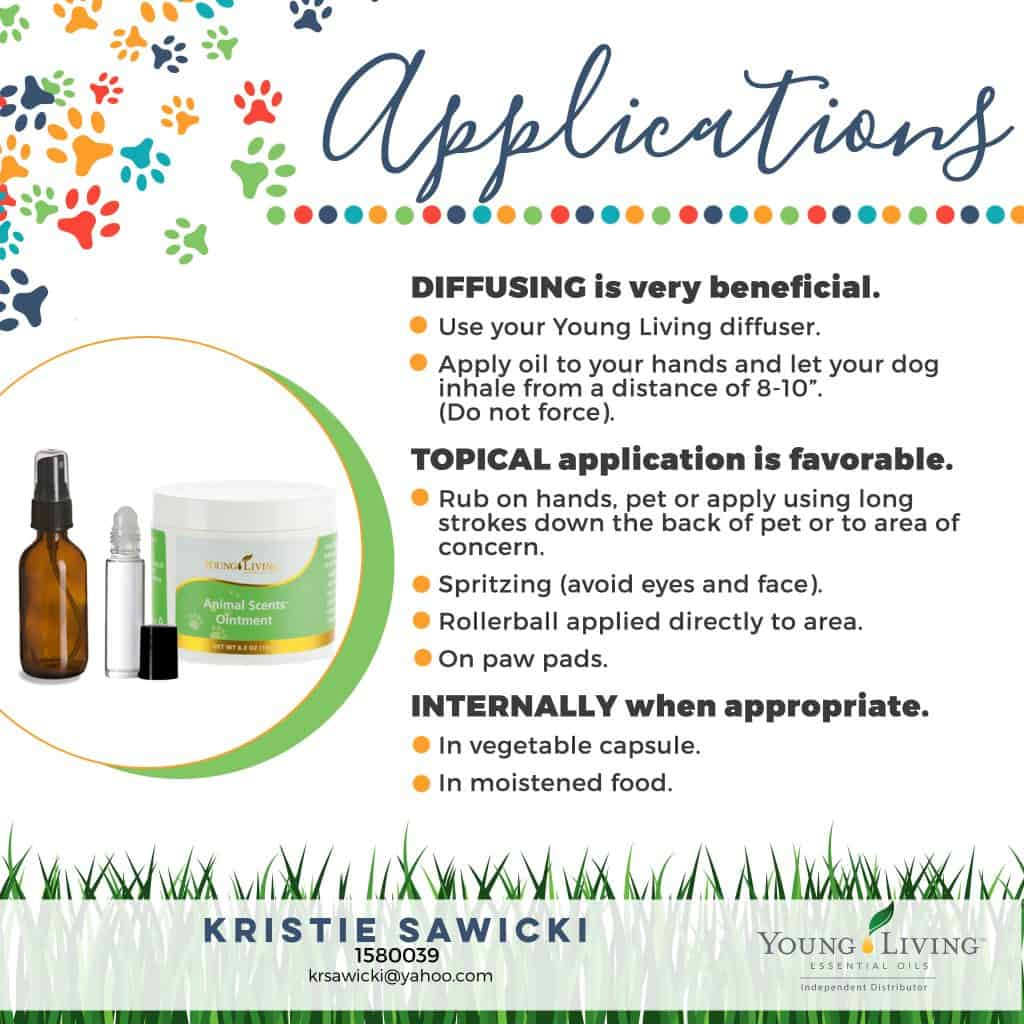 essential oils unsafe for dogs