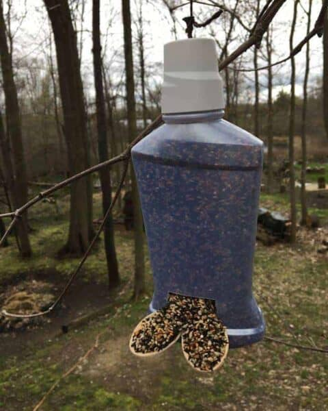 How to Make an Upcycled Birdfeeder
