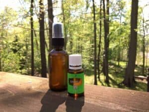 essential oil bug spray recipe