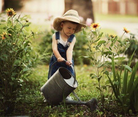 Child watering a garden of flowers.