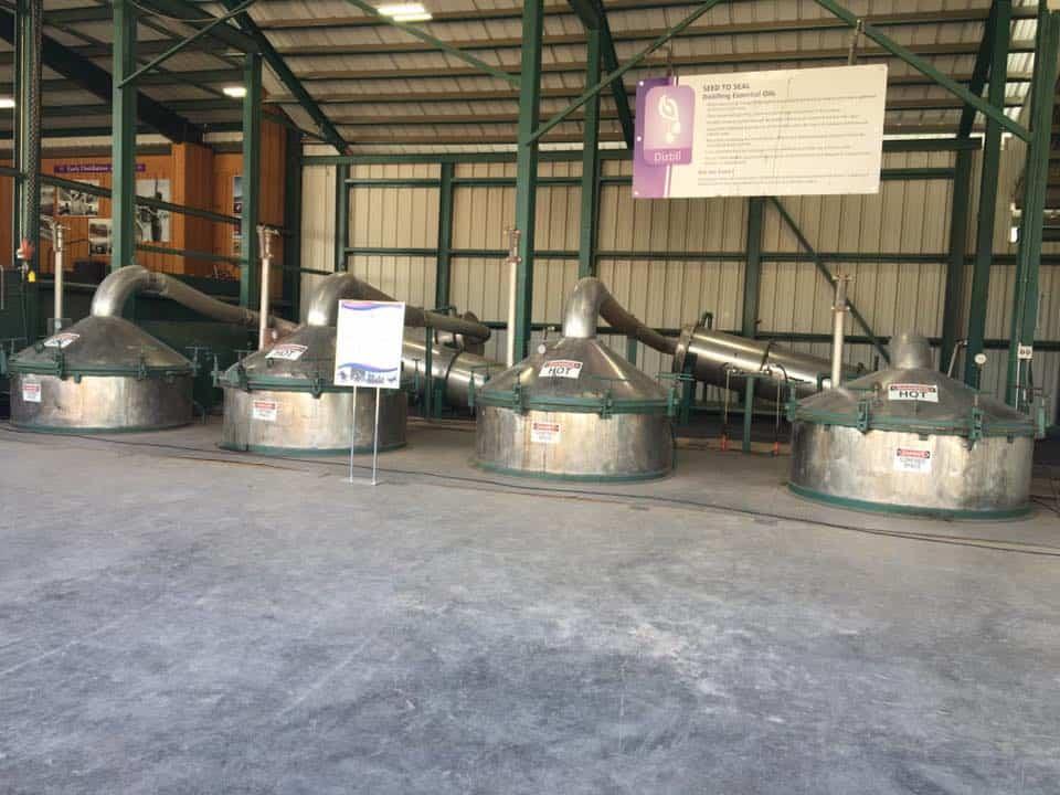 Essential oil distillery