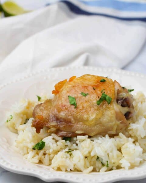 Instant Pot Cilantro Lime Chicken & Rice