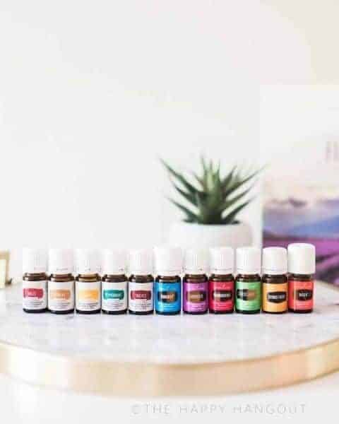several bottles of essential oils sitting on a table with a potted plant