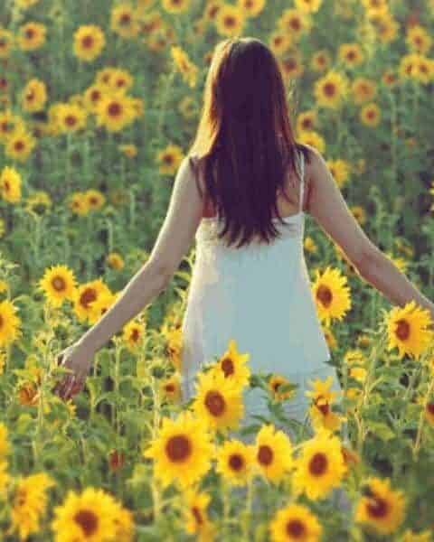 a woman in a white sundress standing in a field of sunflowers