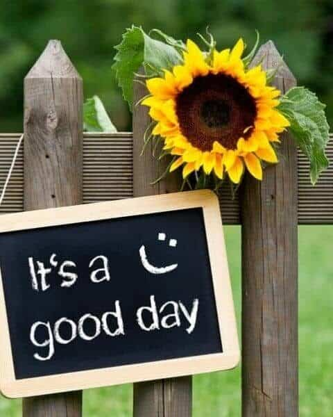 A chalkboard sign that says It's a Good Day hanging on a wooden fence near a sunflower