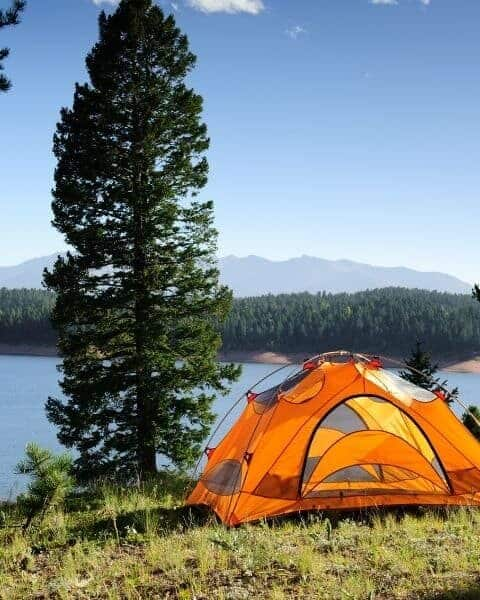 orange tent set up for camping near a lake and a tree