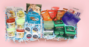 PinchMe September Free Sample Boxes