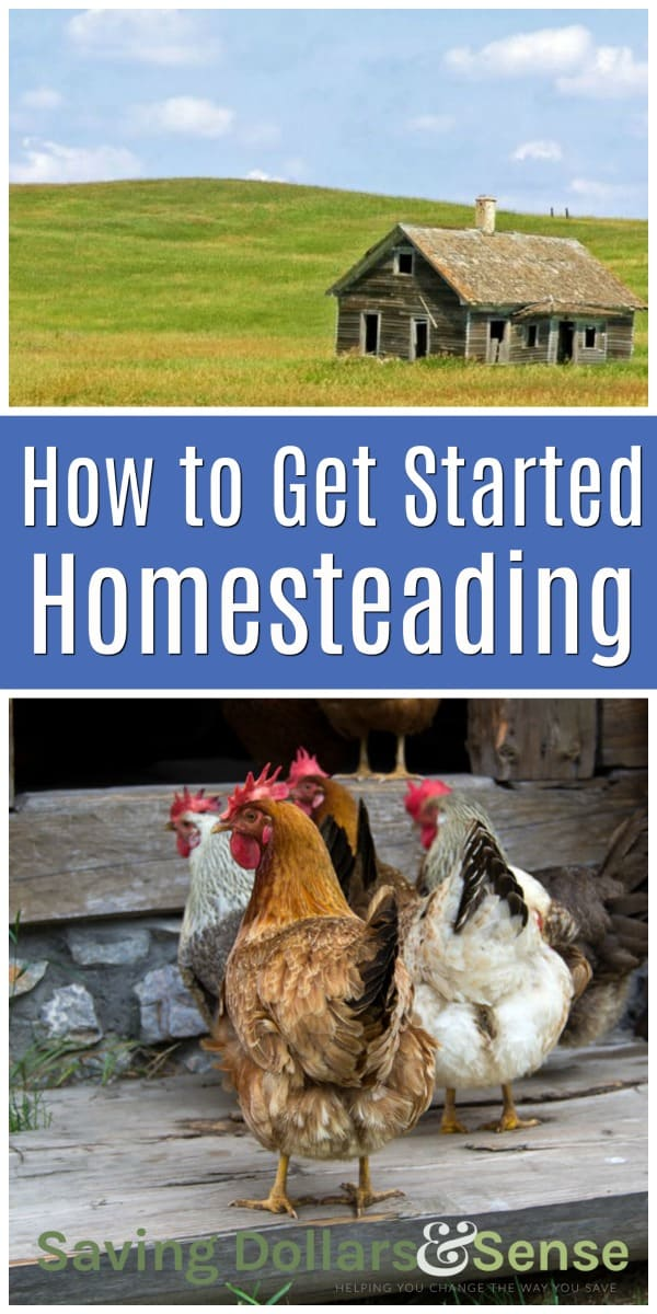 How to get started homesteading.