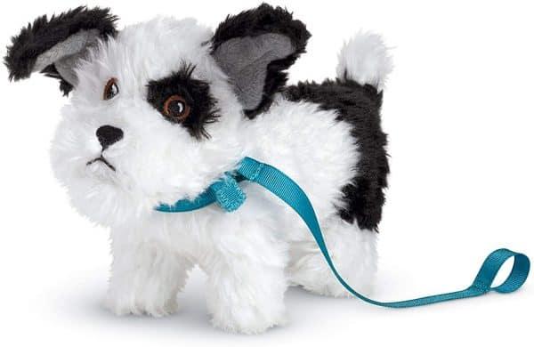 Melody\'s dog Bo.