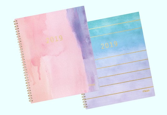 Free 2019 Ombre Planner From Target