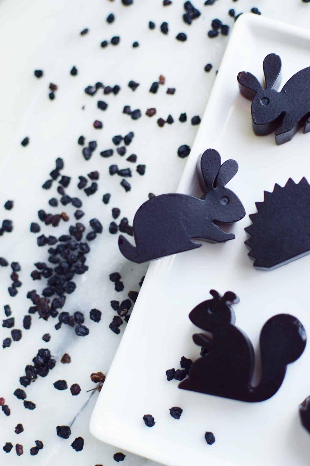elderberry gummies for kids