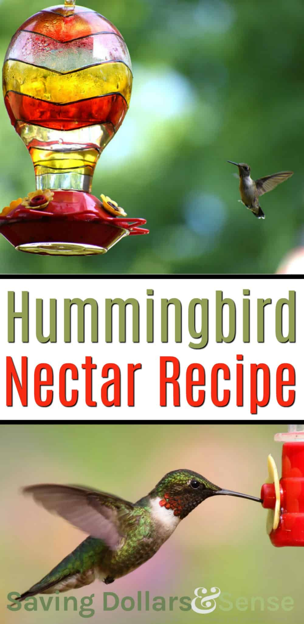 how to make your own hummingbird nectar