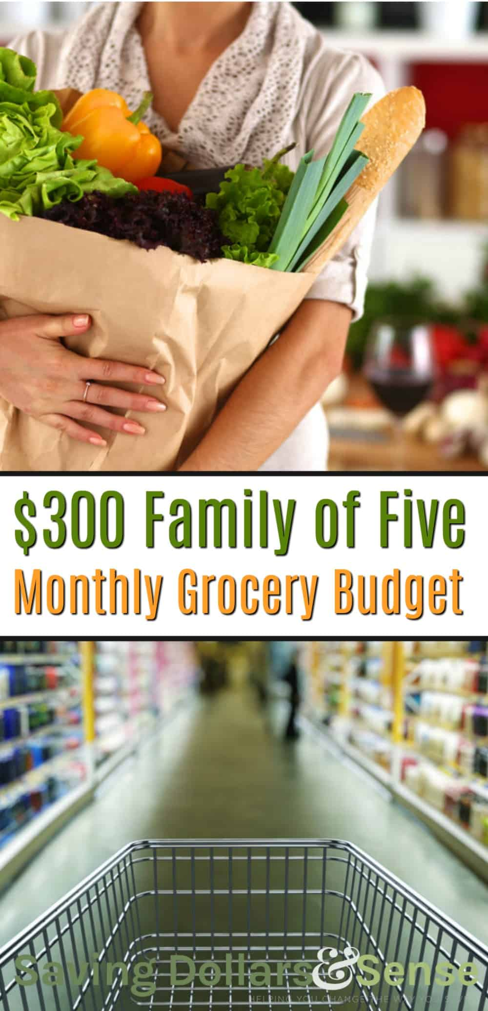 how to save money on groceries. $300 Monthly Budget Meal Planning