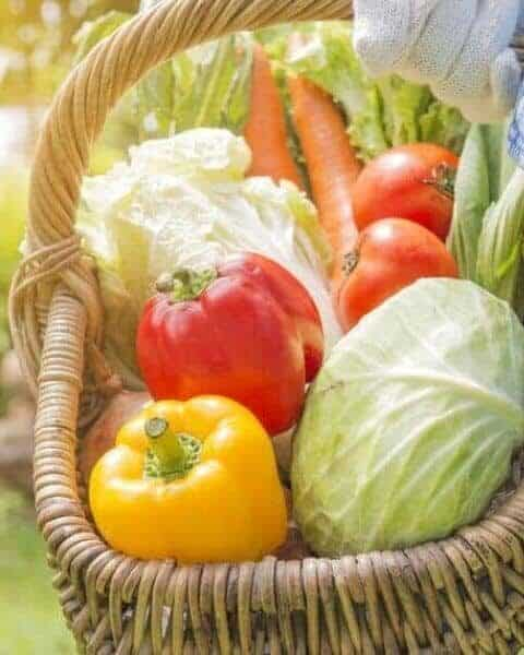 wicker basket filled with tomatoes, peppers, cabbage and carrots